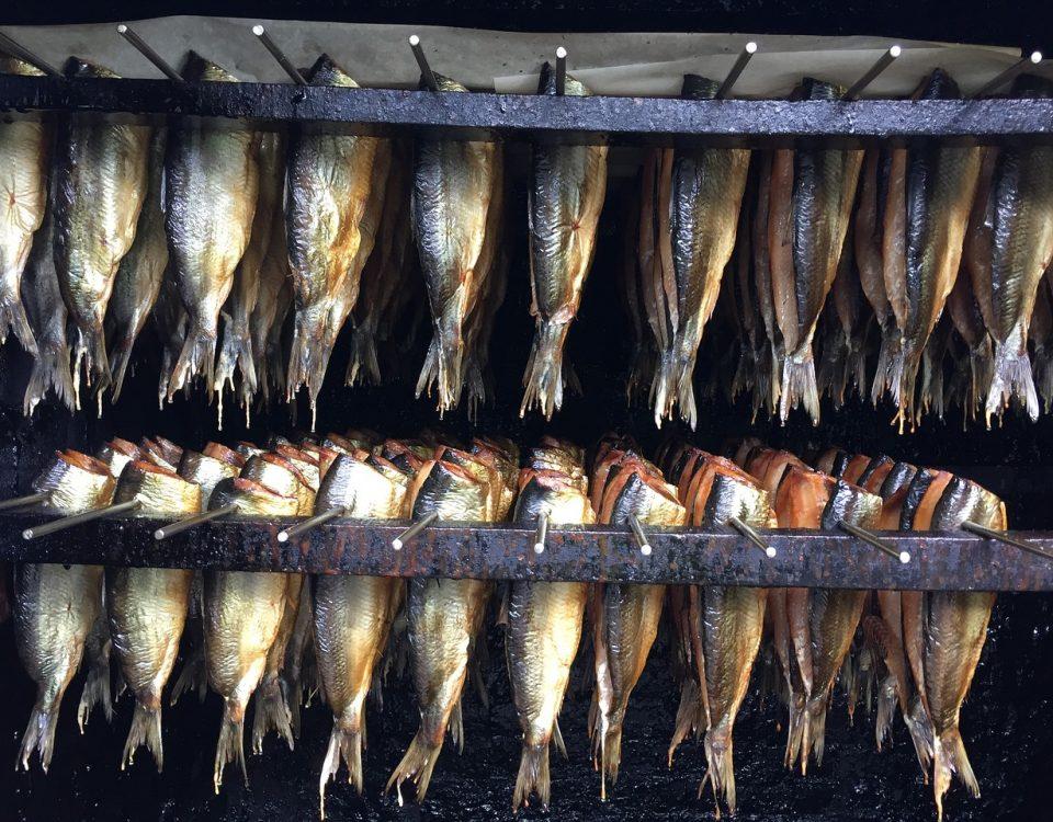 jak wędzić ryby